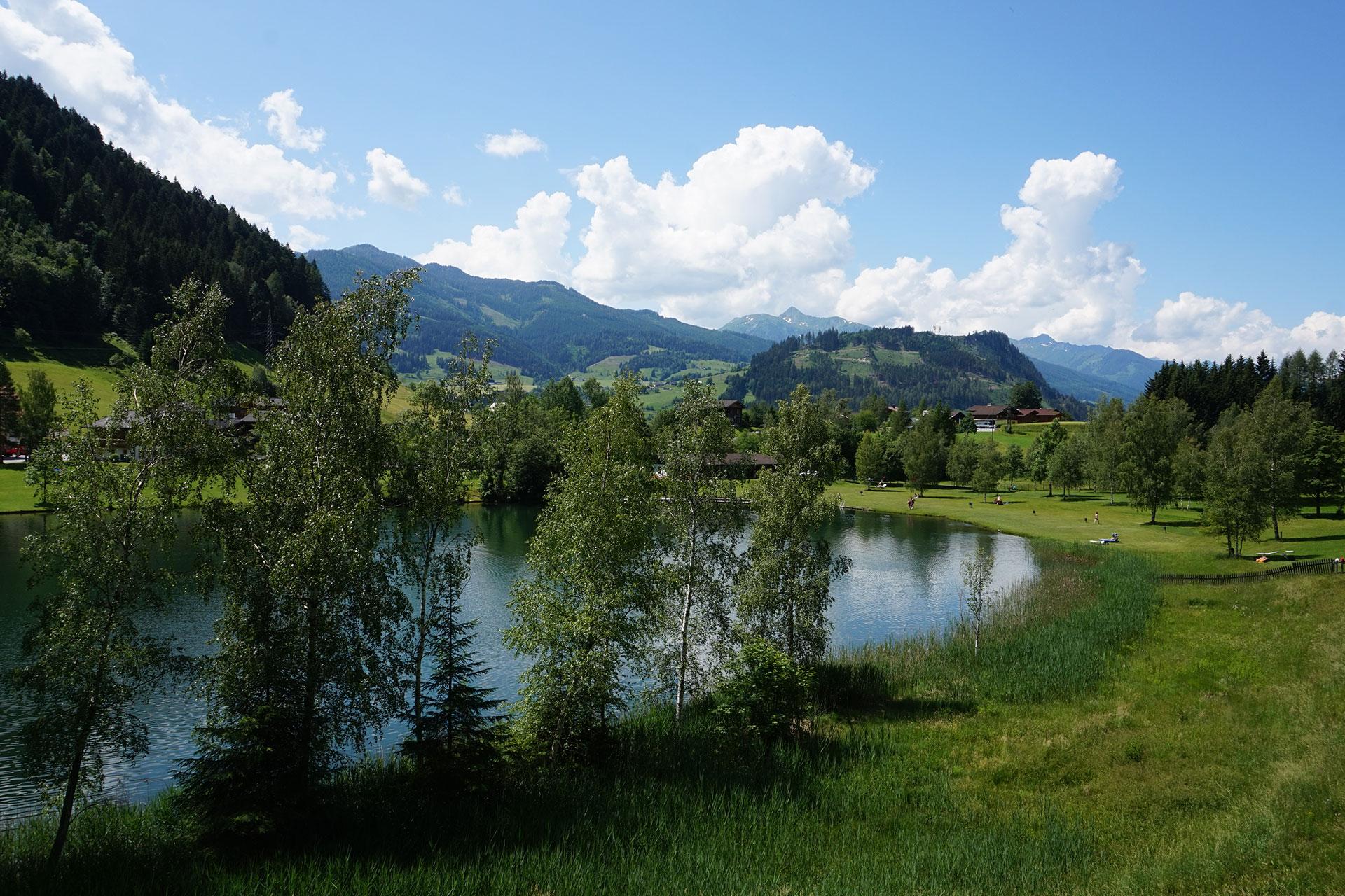 Casa Alpina Goldegg - Wasser und Pferdekutschen